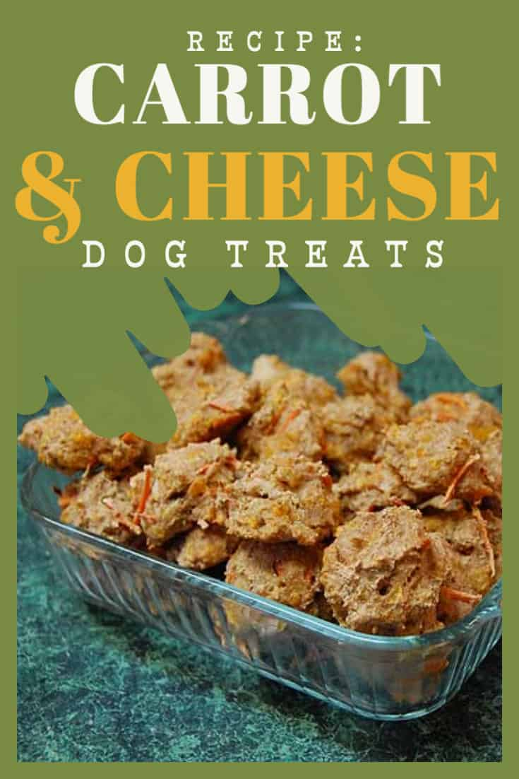 carrot and cheese dog treats recipe