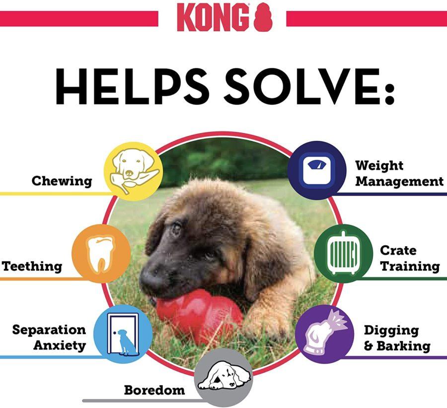 KONG behavior solutions