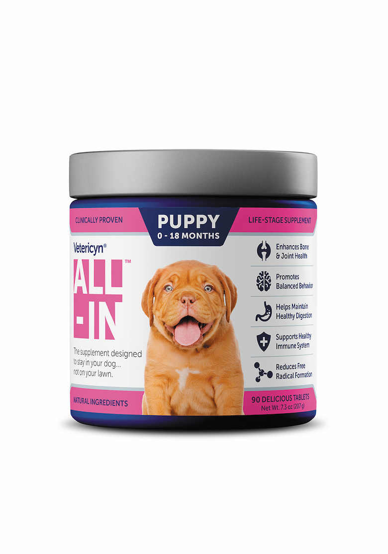 new dog products april 2020