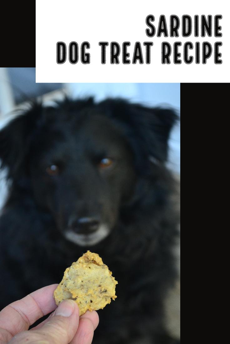 Sardine dog treats recipe