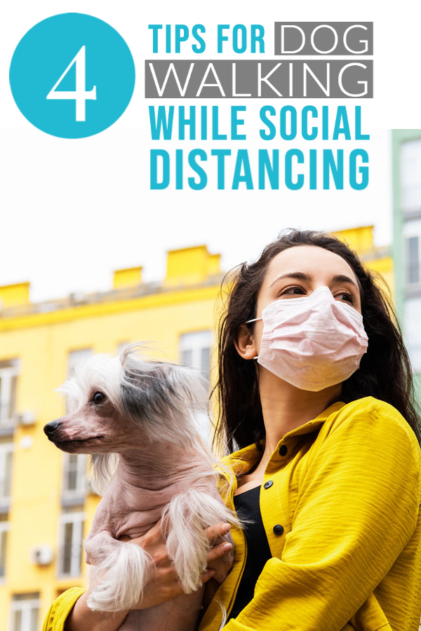 4 Tips for Walking Your Dog While Social Distancing