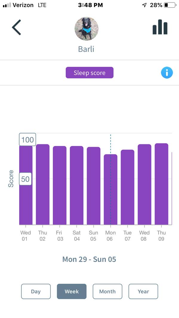 Animo Dog Activity Monitor -- sleep score