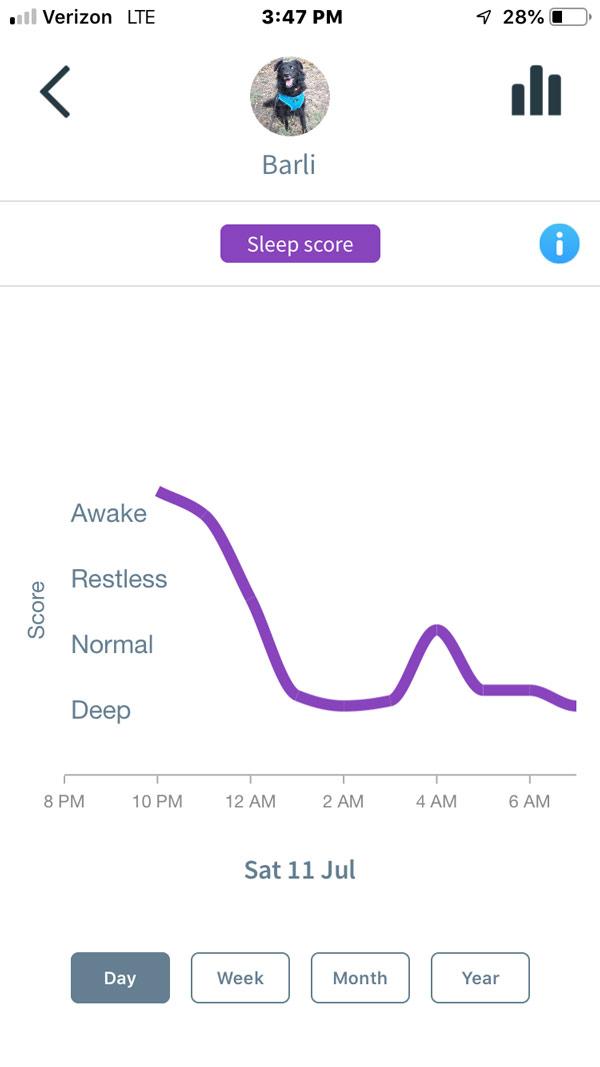 Animo Dog Activity Monitor -- sleep quality