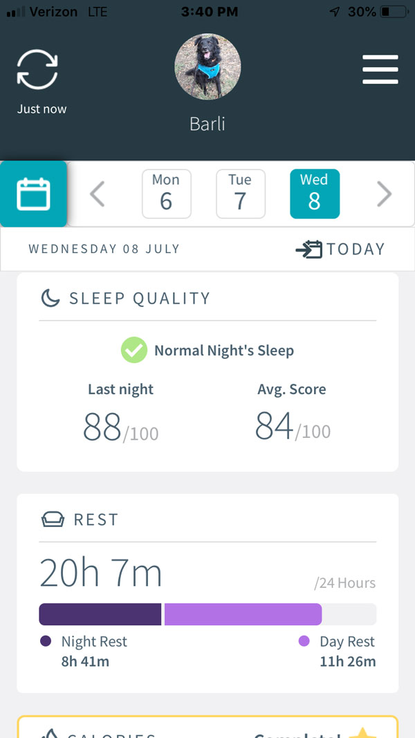 Animo Dog Activity Monitor -- sleep monitor