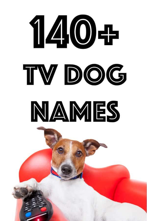 tv dog names