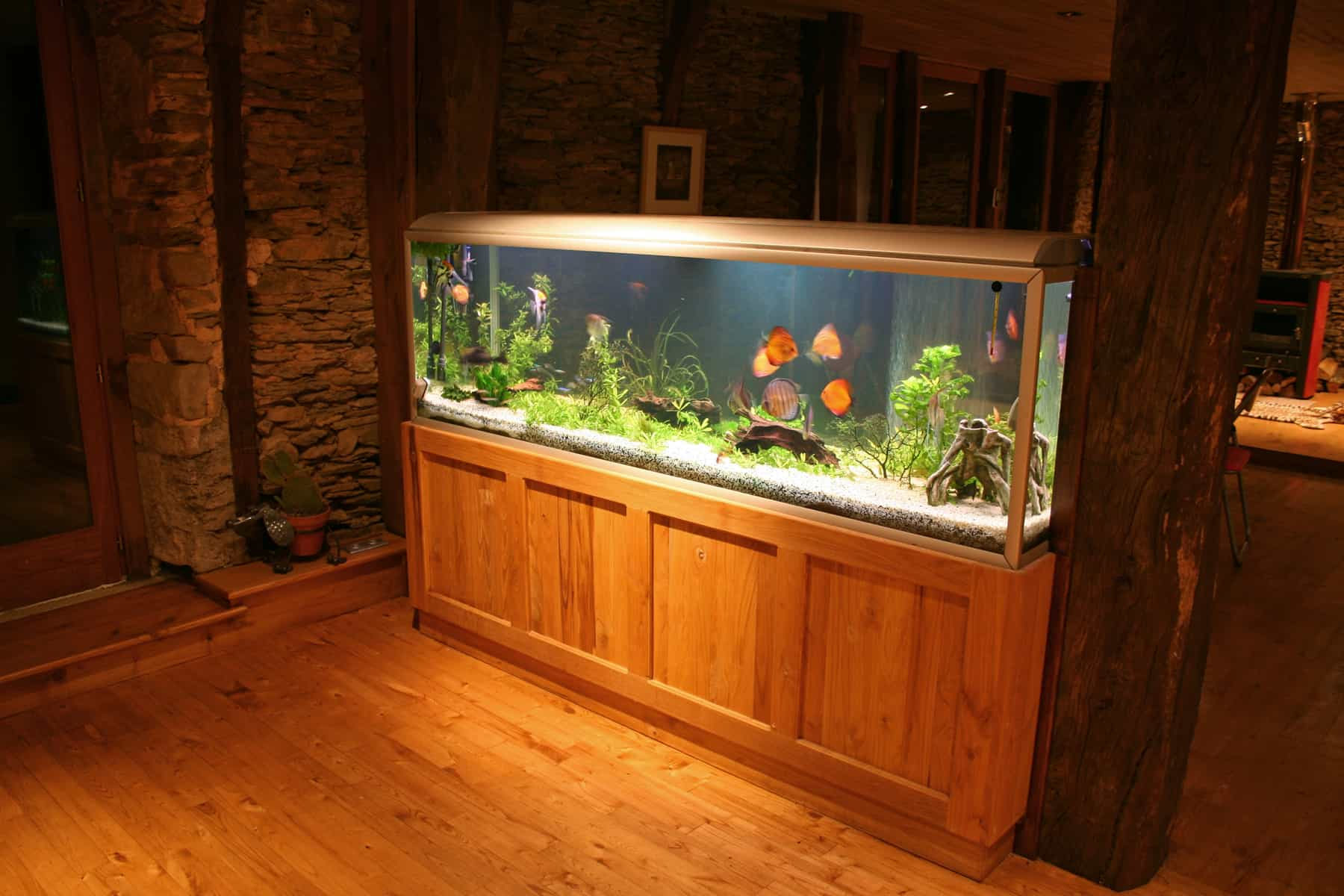 side view of 55 gallon fish tank during at night