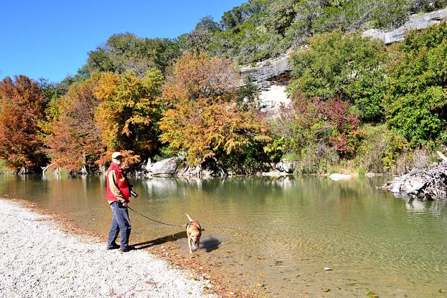 autumn dog walks-john-guadalupe-irie