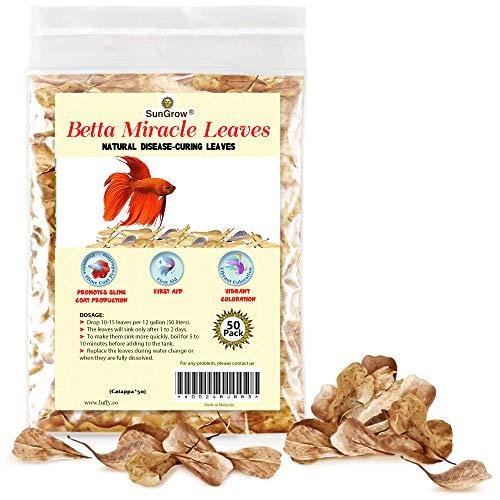 SunGrow Mini Catappa Indian Almond Leaves, Create Tropical Rainforest Environment for Betta &...