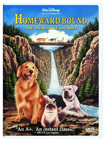 Disney Homeward Bound movie