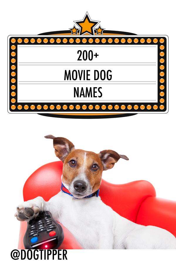movie dog names