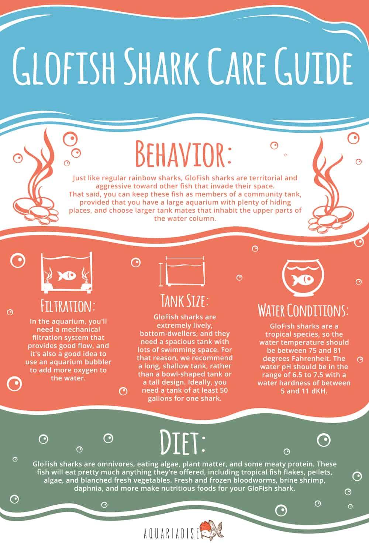 GloFish Shark Infographic