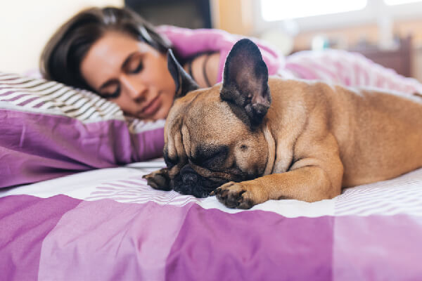 A dog and a woman sleeping on a bed.