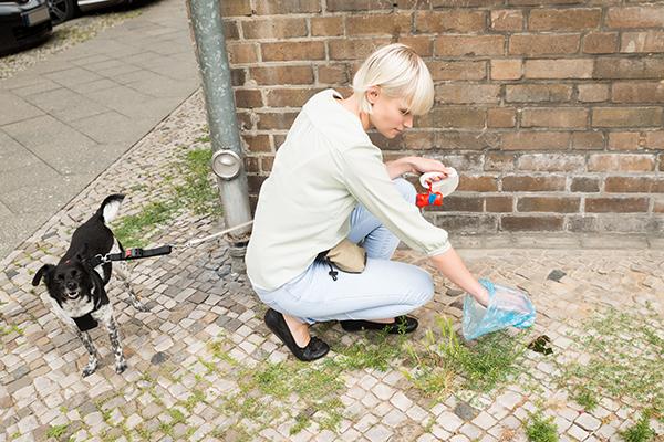 A blonde woman picking up dog poop.