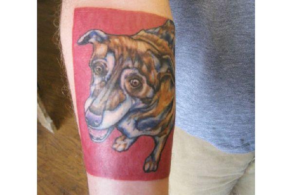 Scott Lorenz Andresen's dog tattoo.