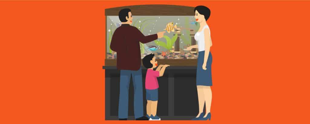 A family admiring their tropical fishes in their aquarium