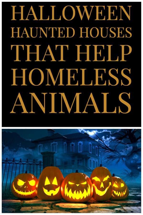 Halloween haunted houses that help homeless animals